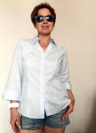 Рубашка голубая базовая marks&spencer