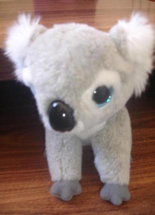 Фирменный коала глазастик в идеале