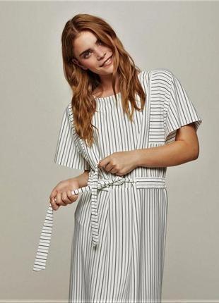 Новое стильное платье в полоску прямого кроя с поясом