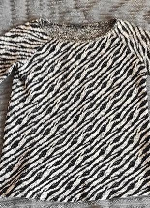 Кофта принт зебра
