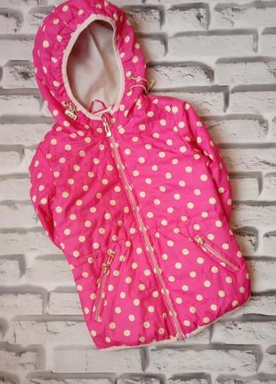 Куртка вітровка для дівчинки