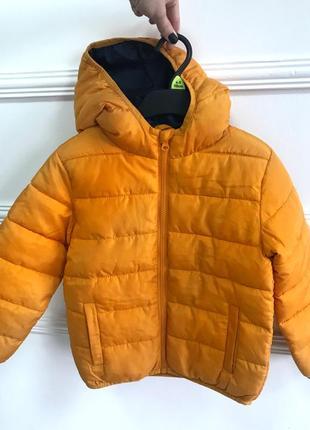 Нова курточка 116р fox&bunny