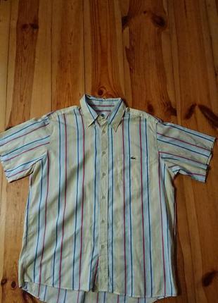 Брендова фірмова рубашка сорочка lacoste,оригінал,розмір 42(l-xl).