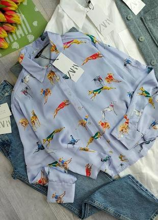 Голубая рубашка в принт собачек🐕🐩
