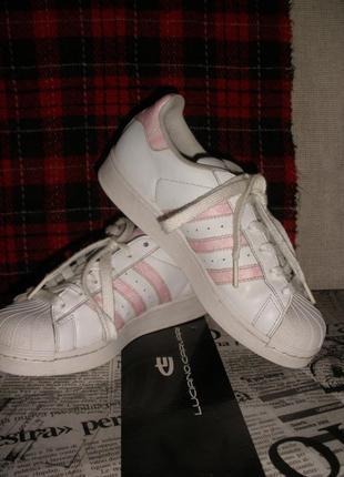 Кроссовки кожаные  женские adidas superstar white/pink  адидас суперстар