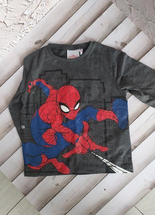Кофта реглан spiderman
