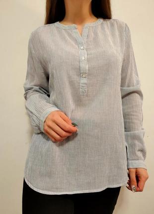 Блузка в мелкую полоску