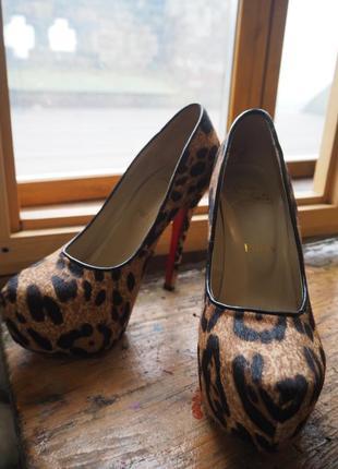 Туфлі 🐯