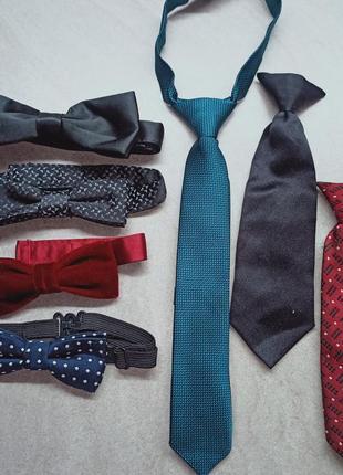 Бабочка-галстук. галстук на резинке. галстук на прищепке