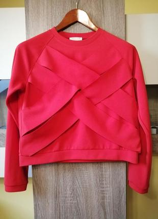 Світшот светер