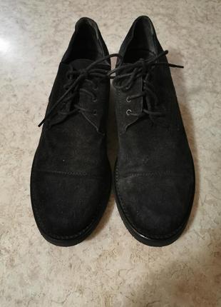 Замшевые туфли, ботинки на шнурках polykova