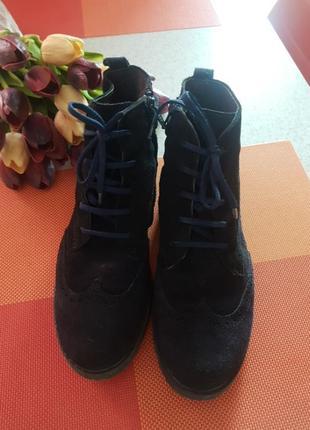 Замшеві черевички clarks