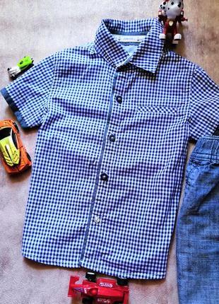 Шведка рубашка не футболка zara next disney h&m 2-3 года