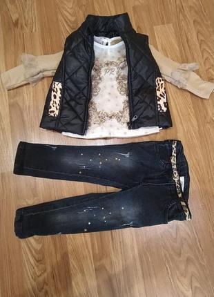 Тройка( жилетка+кофточка+джинсы)