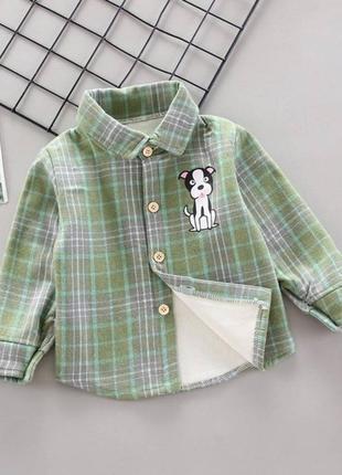 Утеплена сорочка dog зелена