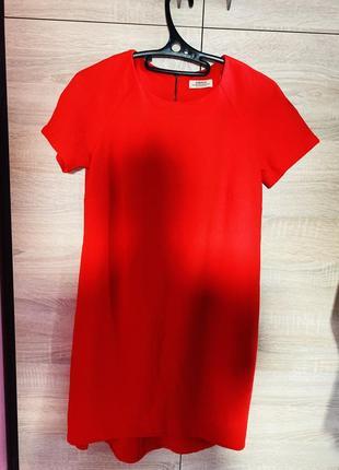 Платье женское papaya м(46)