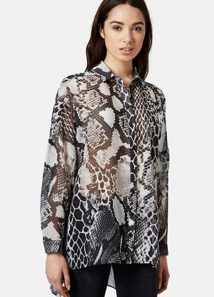 Стильна шифонова блуза сорочка рубашка анімал принт tooshop