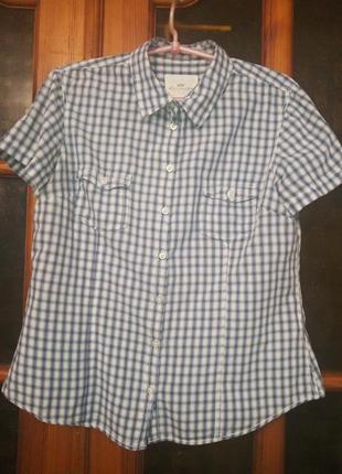 Рубашка h&m в клетку с короткими рукавами, блуза, m/48 р
