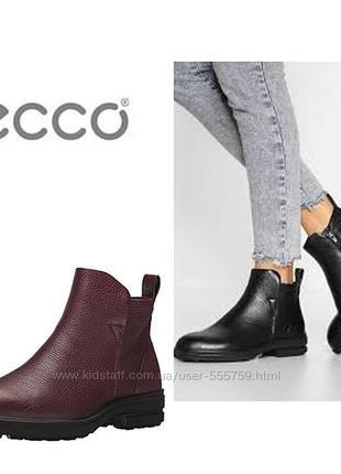 Кожаные демисезонные ботинки экко ecco zoe фурнитура: молния верх: кожа под