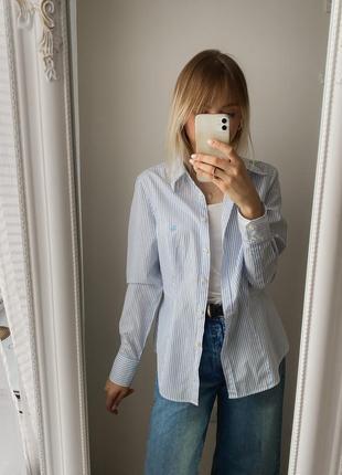 Рубашка в полоску, полосатая рубашка, удлинённая рубашка в полосочку