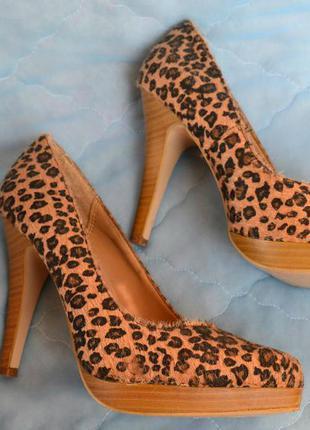 Туфли с леопардовым принтом (пони,р-р 37,5) usa