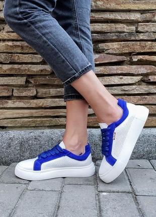 Кеды с перфорацией на синих шнурках