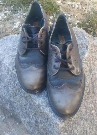 Туфлі чоловічі оксфорди