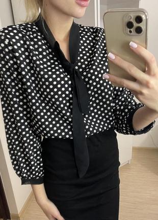 Лёгкая блуза в горох с галстуком с бантом