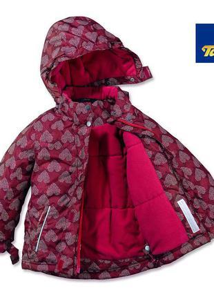 Термокуртка зимняя tchibo tcm (германия), коллекция зима 2017