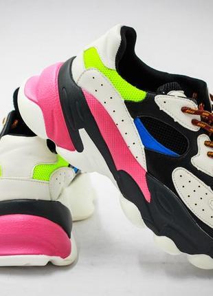 Красочные стильные кроссы