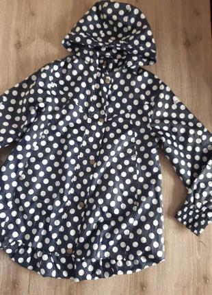 Ветровка , куртка синяя в горох на возраст 9-10 лет