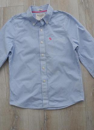 Рубашка abercrombie s fitch р. m ( новое ) женская