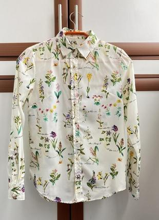 Рубашки шифоновые с длинным рукавом