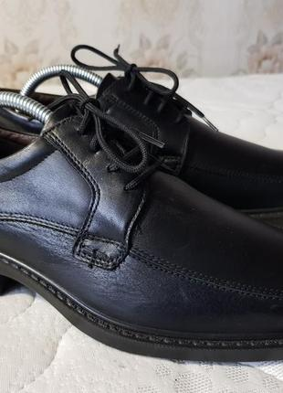Мужские кожаные туфли gallus