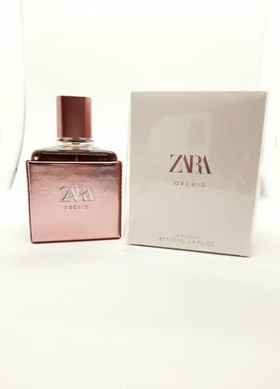 Zara orchid від zara