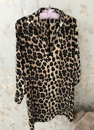 Коктейльное платье, легкое, прямое с воротником и манжетами