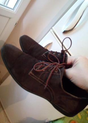 Стильные туфли от etor6 фото