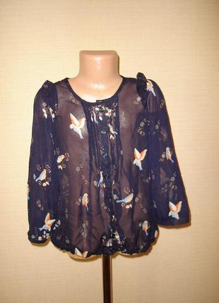 Шифоновая блузка с птичками на 11 лет от new look