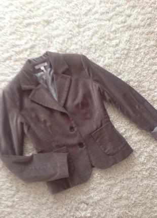Велюровый жакет пиджак