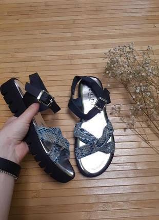 Стильні босоніжки сандалі шкіра bellini