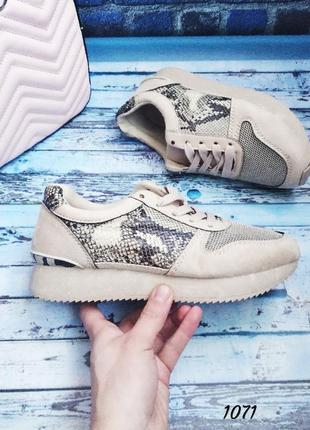 Замшевые кроссовки с сеткой змеиный принт. распродажа 💋