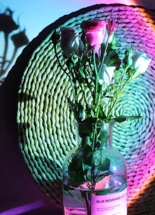 Лампа цветная ночник круговая