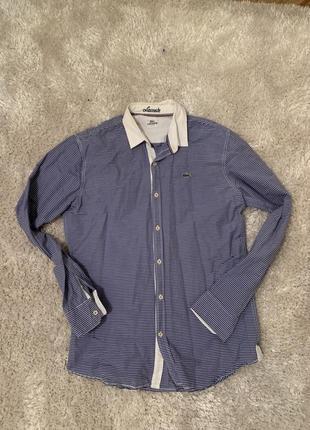 Lacoste рубашка оригинал размер l
