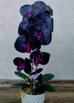 Орхідея з латексу