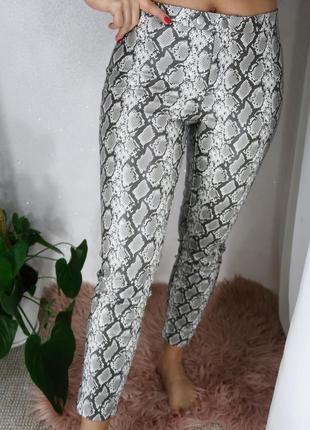 Лосины штаны под рептилию h&m