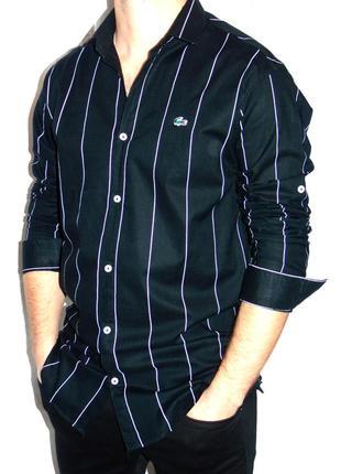 Lacoste брендовая рубашка - xl - l