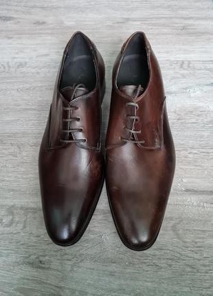Minelli мужские туфли оксворды кожа оксворди броги шкіра