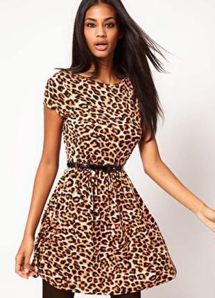 Стильное леопардовое платье asos р-р м