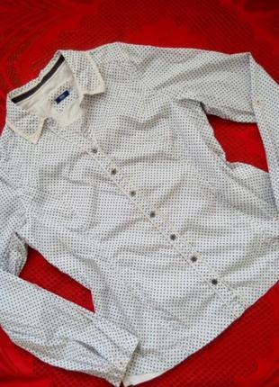 Стильная легкая рубашка в горох, cecil, винтаж