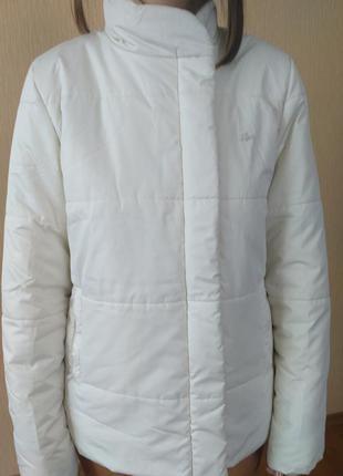 Куртка lacoste (оригинал)
